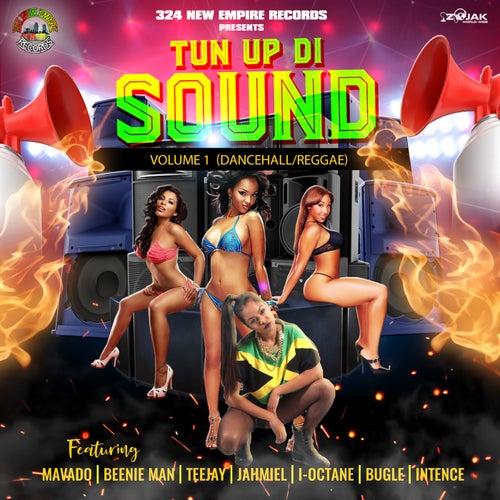 Tun Up Di Sound Vol.1 de Various Artists