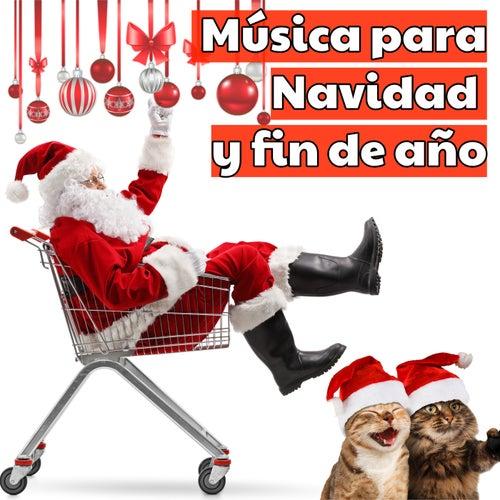 Música para Navidad y fin de año de Various Artists