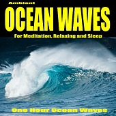 Ambient Ocean Waves for Meditation, Relaxing and Sleep - Single by One Hour Ocean Waves