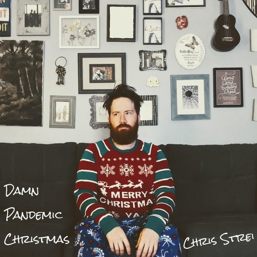 Damn Pandemic Christmas by Chris Strei