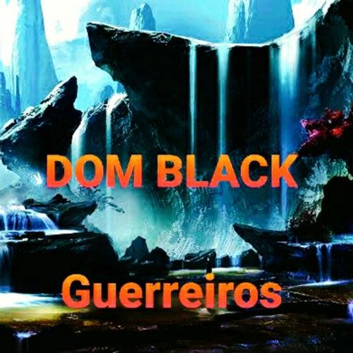 Guerreiros de Dom Black Oficial