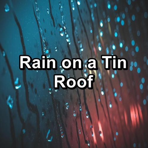 Rain on a Tin Roof by Rain Radiance