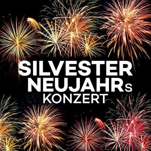 Silvester Neujahrskonzert von Various Artists