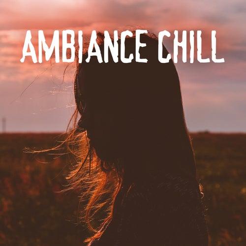 Ambiance Chill von Various Artists