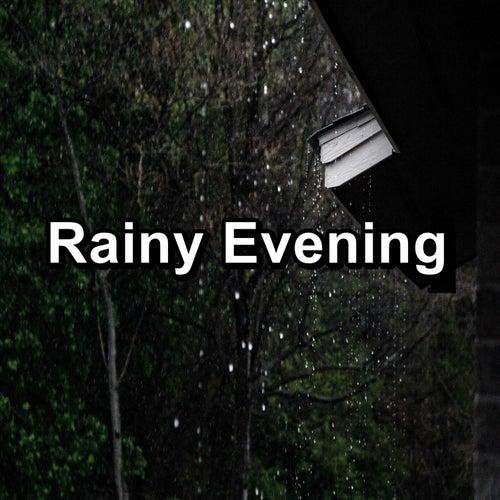 Rainy Evening by Thunderstorm Sound Bank