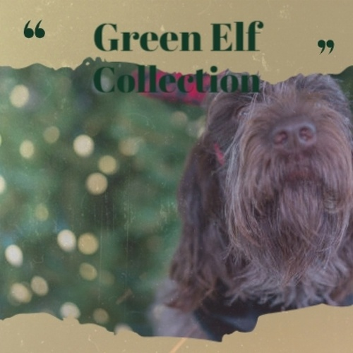 Green Elf Collection de Becky Lee Beck, Vicky and Al, VAЀ, Kidz Bop Christmas, Johnny Maestro