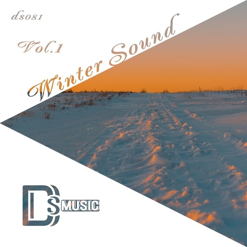 Winter Sound, Vol.1 by Various Artists