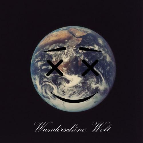 Wunderschöne Welt (feat. Bronson XL) by Mayster_p.