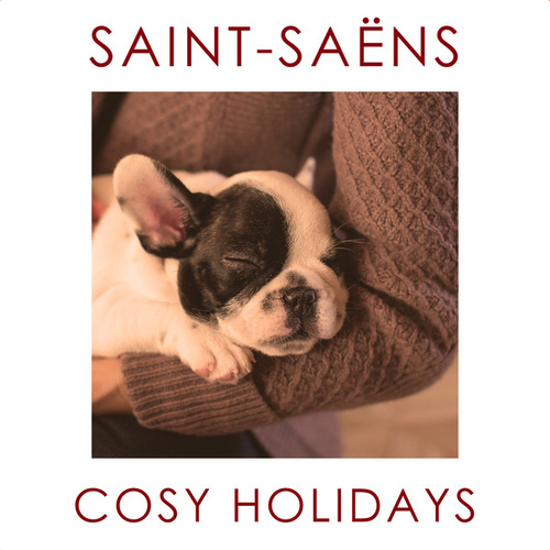Saint-Saëns - Cosy Holidays by Various Artists