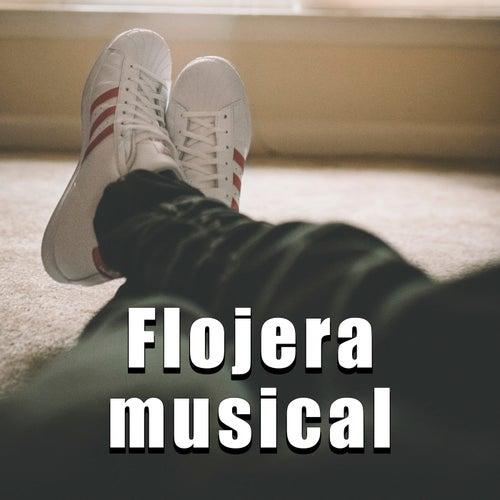 Flojera musical by Various Artists