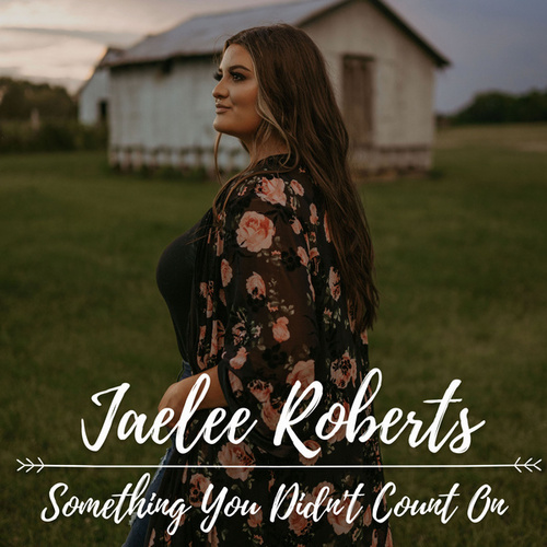 Something You Didn't Count On by Jaelee Roberts