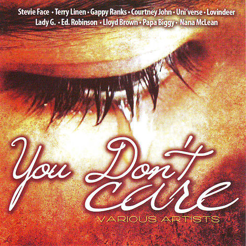 You Don't Care by Various Artists