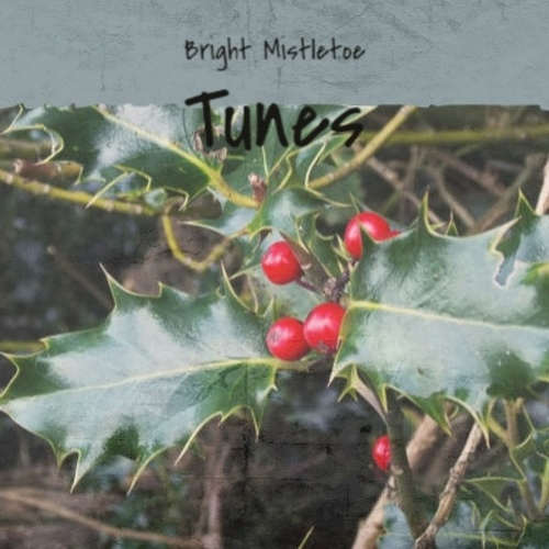 Bright Mistletoe Tunes de The Sonics, Andre Kostelanetz And His Orchestra, Baby Jane And The Blenders, Billy Eckstine, The Coasters, The Fabulous Thunderbirds, Traditional, Johnny Maestro