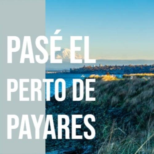 Pasé El Perto De Payares de Various Artists
