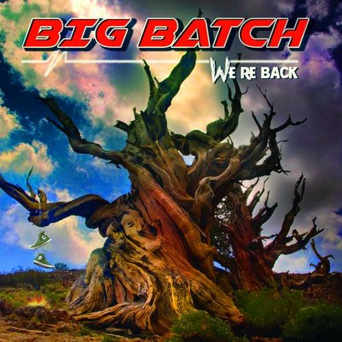 We're Back by Big Batch