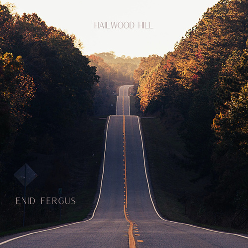 Hailwood Hill von Enid Fergus