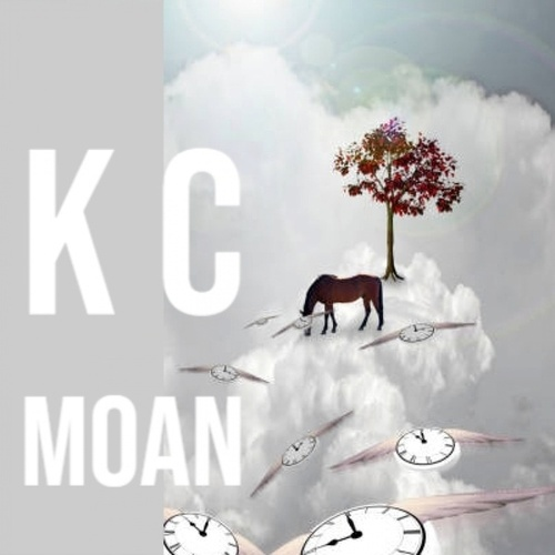 K C Moan van Various Artists