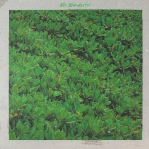 Mr Wonderful de Various Artists