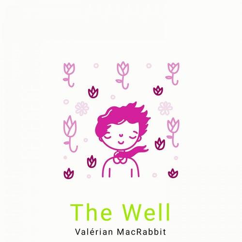 The Well de Valérian MacRabbit