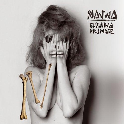 El ultimo primate de Najwa