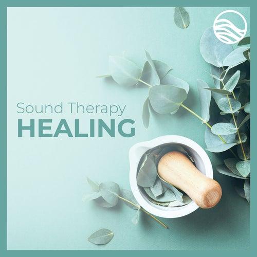 Sound Therapy: Healing by David Lyndon Huff