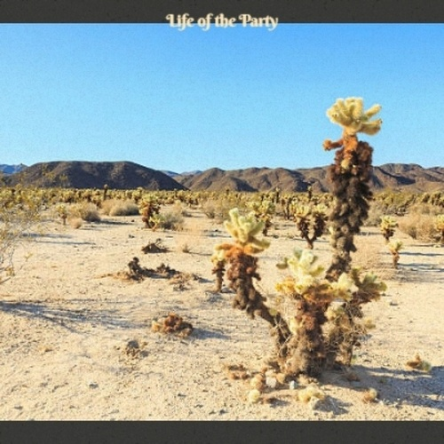 Life of the Party by Various Artists