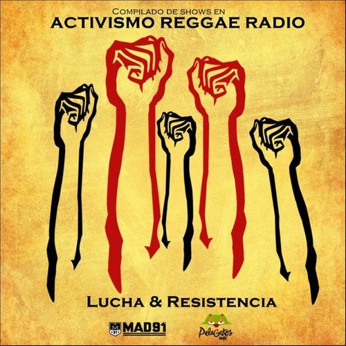 Lucha & Resistencia: Compilado de Shows en Activismo Reggae Radio by Various Artists