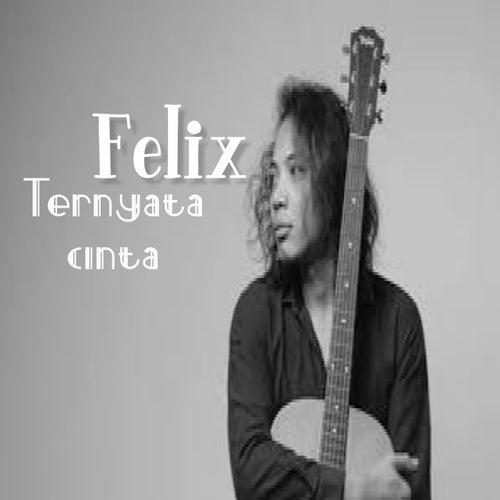 Ternyata Cinta von Felix (Rock)
