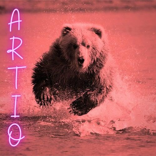 Artio by Tau Alpha Beta