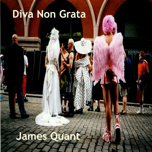 Diva Non Grata by James Quant