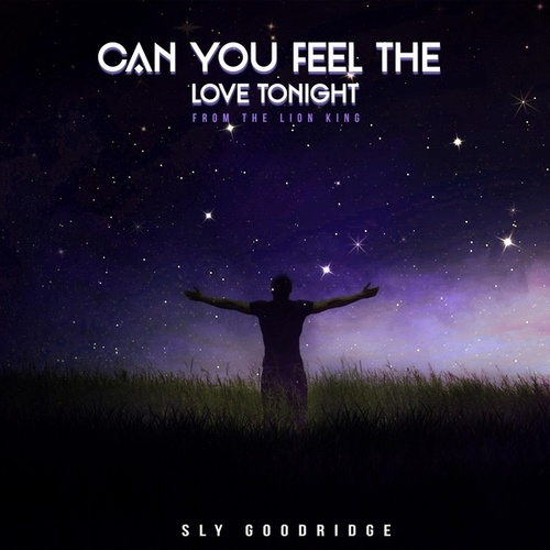 Can You Feel the Love Tonight de Sly Goodridge