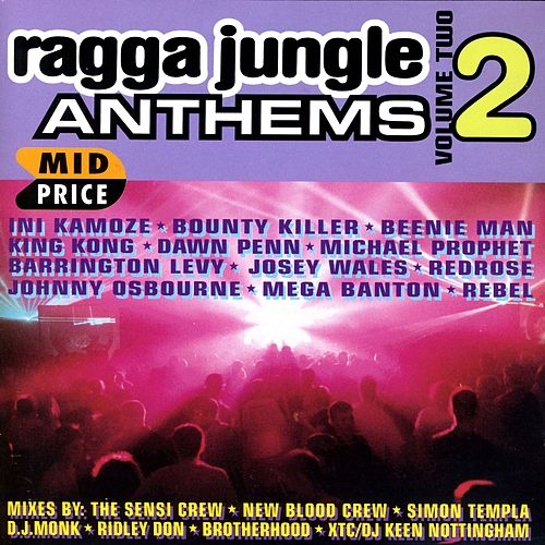 Ragga Jungle Anthems Vol. Two by Various Artists