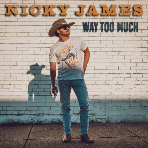 Way Too Much by Nicky James