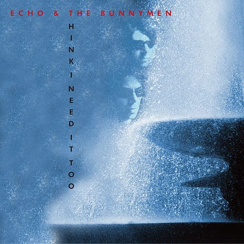 Think I Need It Too di Echo and the Bunnymen