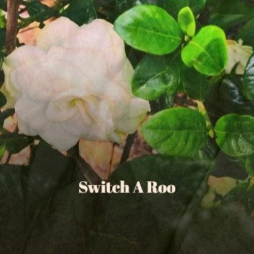 Switch A Roo by Various Artists