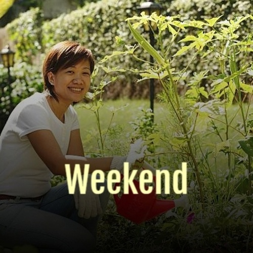 Weekend by Various Artists