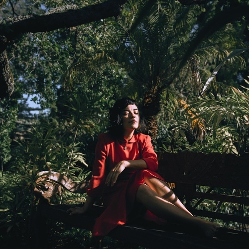 I Am California by Aviva Le Fey