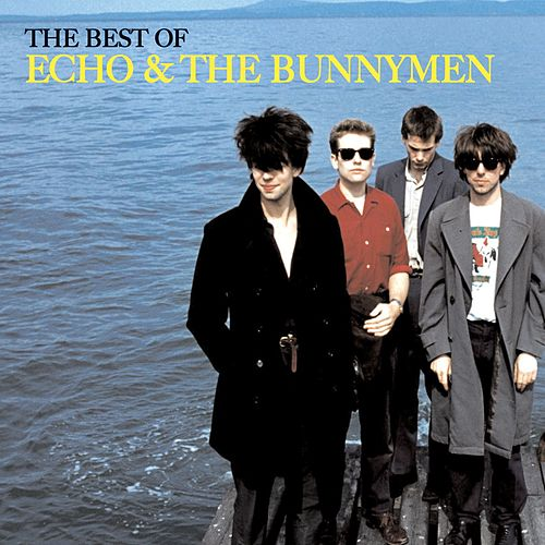 The Best of Echo & The Bunnymen [w/interactive booklet] de Echo and the Bunnymen