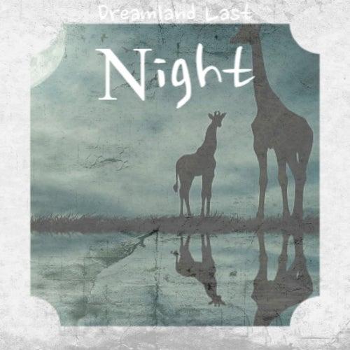 Dreamland Last Night de Various Artists