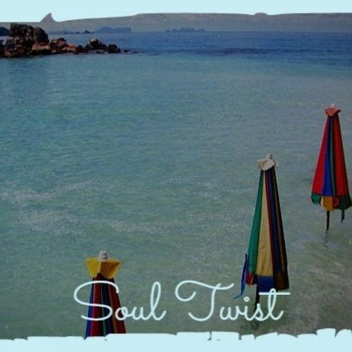 Soul Twist von Various Artists