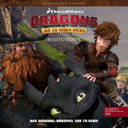 Folge 52: Der Verräter / Weidenrinde (Das Original-Hörspiel zur TV-Serie) von Dragons - Auf zu neuen Ufern