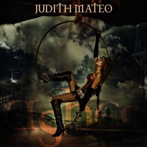 Ashes von Judith Mateo