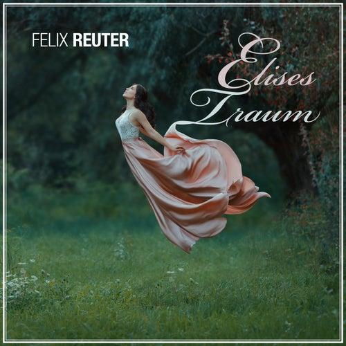 Elises Traum by Felix Reuter