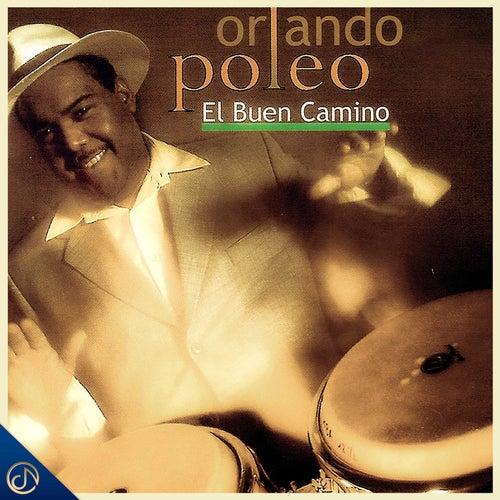 El Buen Camino by Orlando Poleo