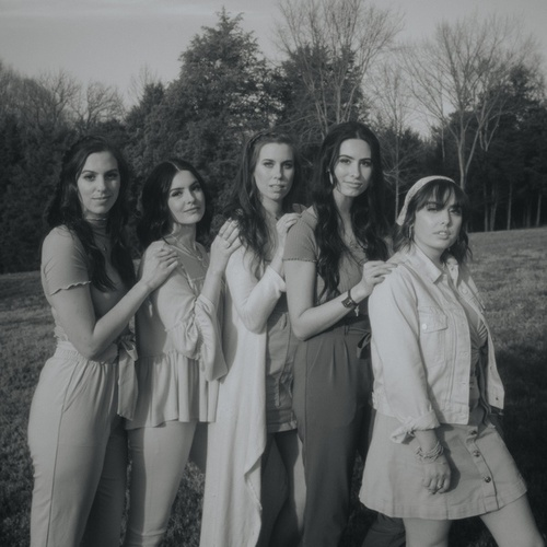Someone You Loved / Bruises / Hold Me While You Wait / Before You Go von Cimorelli