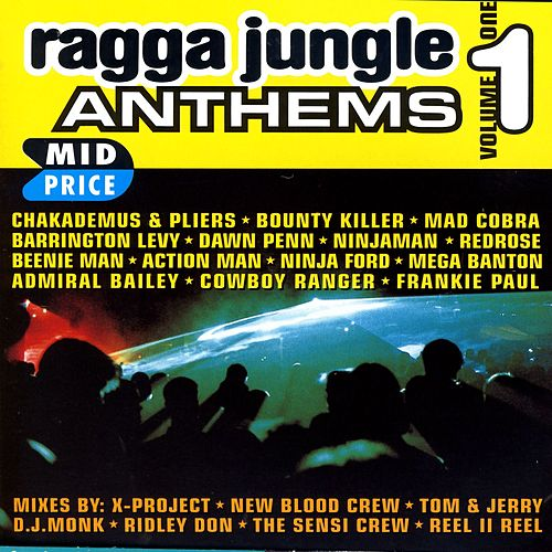Ragga Jungle Anthems Vol. One by Various Artists