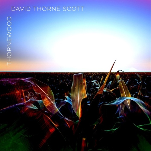 Thornewood by David Thorne Scott
