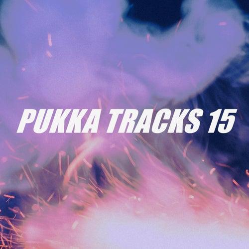PUKKA TRACKS 15 de Various Artists