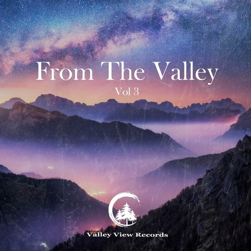 From the Valley: Vol 3 by Various Artists