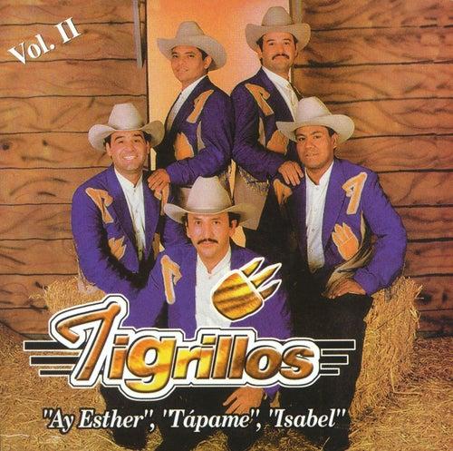 Los Tigrillos Vol. II von Los Tigrillos